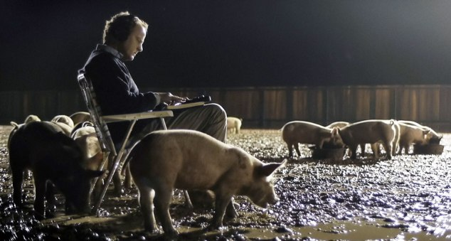 upstream-color-pigs-cropped