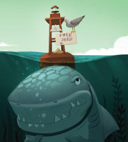 carnivores shark