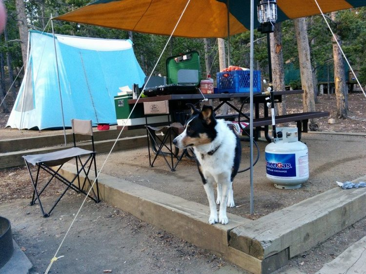 a recent camping trip, w/ Eleanor Swift