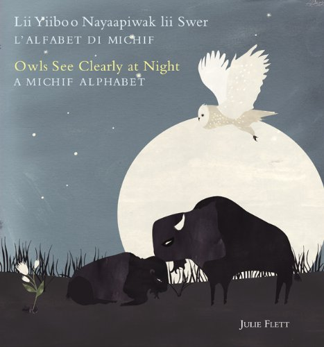Owls See Clearly at Night cover