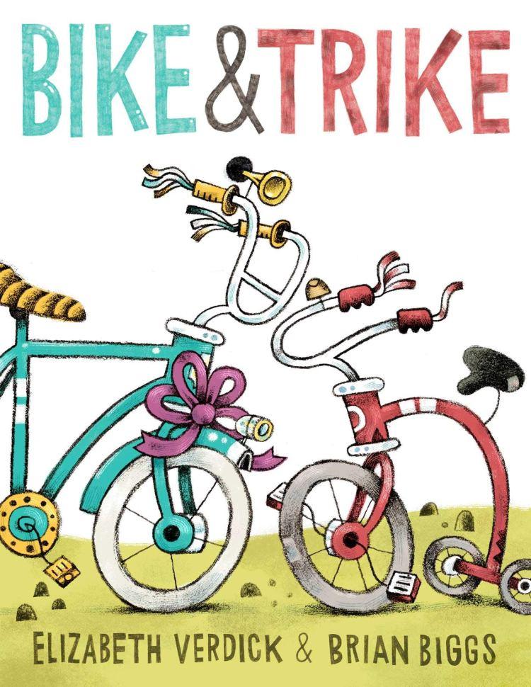 bike trike cover